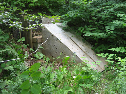 Root Cellar Entrance